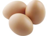 Biologische Eieren 6st