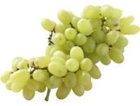 Witte Druiven zonder pit 500gr